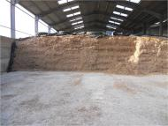 Health Hazards from silage