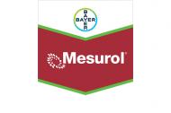 Safety Precautions when Handling Mesurol