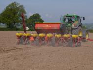 Maize Drilling Course - Spring 2019